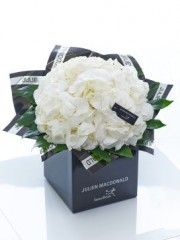 Julien Macdonald Sophisticated White Hydrangea Hand-tied
